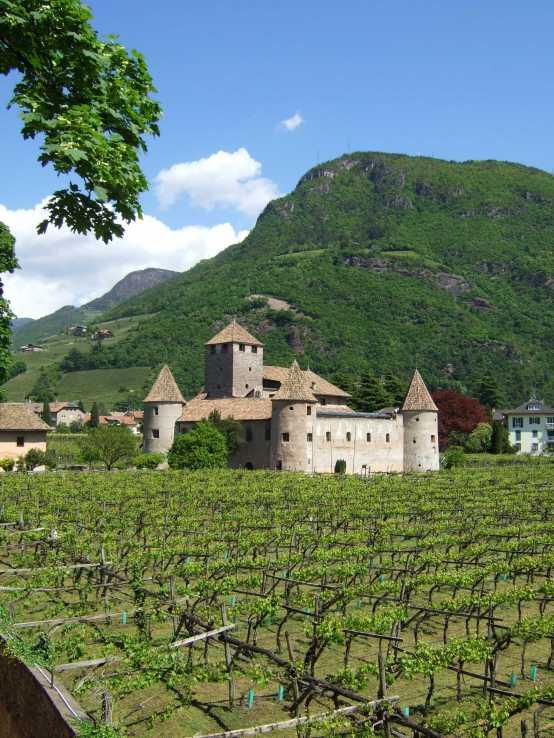 Castle & Dolomites